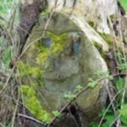 Profilbild von SaChrA