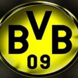 Profilbild von BVB09