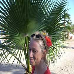 Profilbild von Caesi