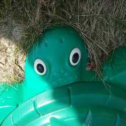 Profilbild von filie54