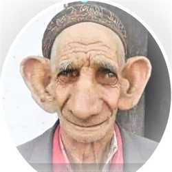 Profilbild von Yankee@2017