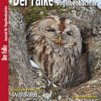 2017-01-Cover