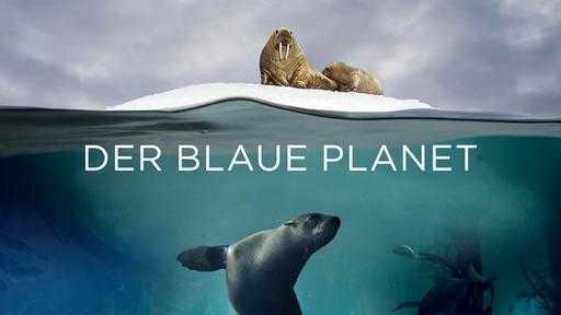 der blaue planet stream
