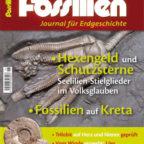 Fossilien_1-2014_5x7-neu-1