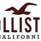 Freenet_Hollister_Co._Logo