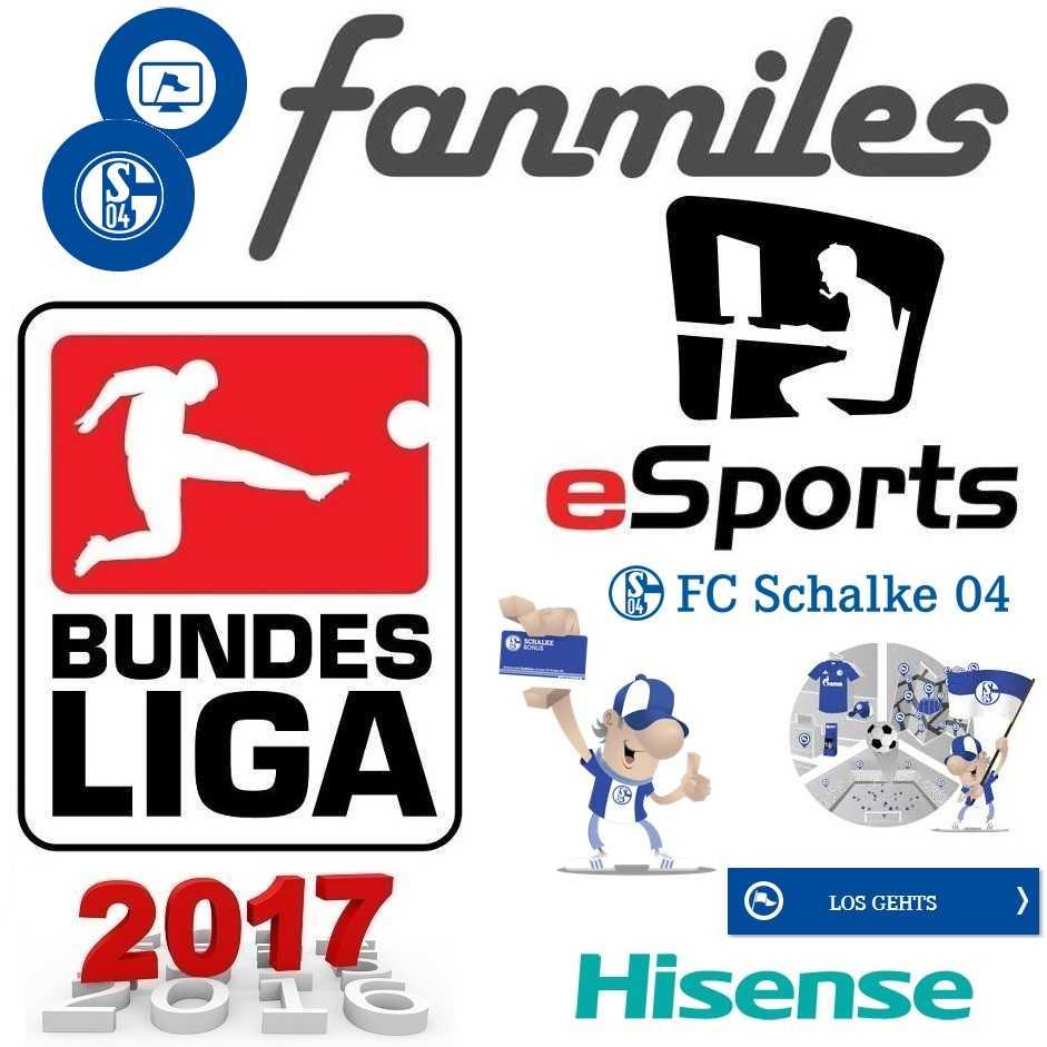 Fanmiles Schalke