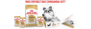 RC_EU_Chihuahua_Kit_campaign_1000x320_3