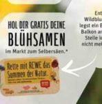 Gratis Abenteuerbuch mit der Biene Maja & Blühsamen zum Selbersäen bei Rewe (bis 25.05.)
