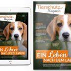 Tierschutz-Shop-Spendenplattform-Tierschutz-Magazin-online-PDF