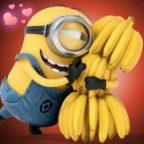 bff1d0748ad4a8a1b353dc0c4f56076f–minions-love-minions-despicable-me