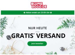 blume2000-de-nur-heute-gratis-versand