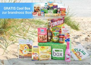 cool_box-brandnoozbox_landingpage