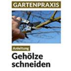 ebook-Geh_lzeschneiden