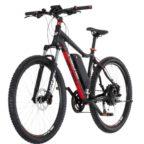 fischer-proline-e-mountainbike