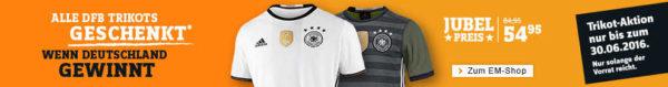 SportScheck: Alle DFB-Trikots geschenkt*, wenn Deutschland die EM gewinnt