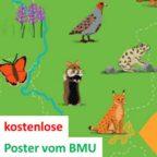 kostenlose_Poster_vom_BMU