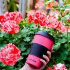 pandoo-trinkbecher-kaffeebecher-aus-bambus-mit-hitzeschutz-11997377691690_2000x