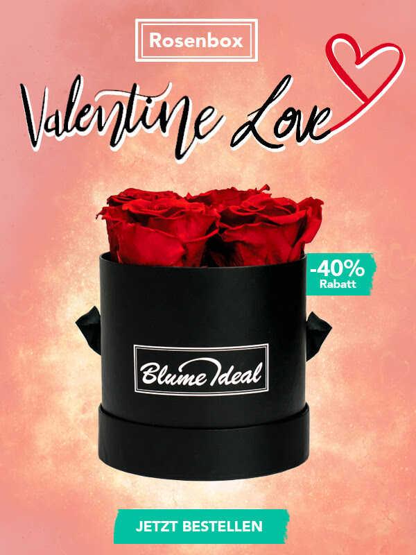 Rosenbox Bei Blumeideal Zum Valentinstag Schnappchen Blog Mit