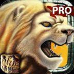 safari_pro