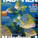 tauchen-2012-10-