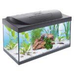 tetra-starter-line-aquarium-54l-fuer-4449e