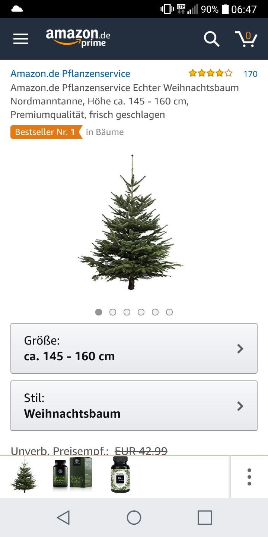 Weihnachtsbaum Nordmanntanne.Weihnachtsbaum Nordmanntanne