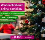 weihnachtsbaum-von-blumeideal-liefern-lassen